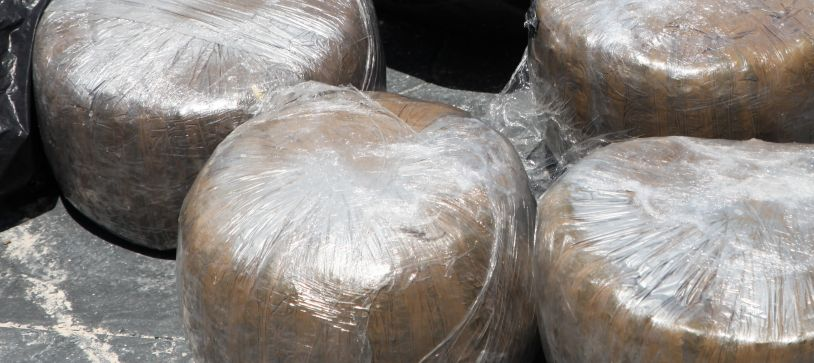 Drugs Find by Defence and Police Forces